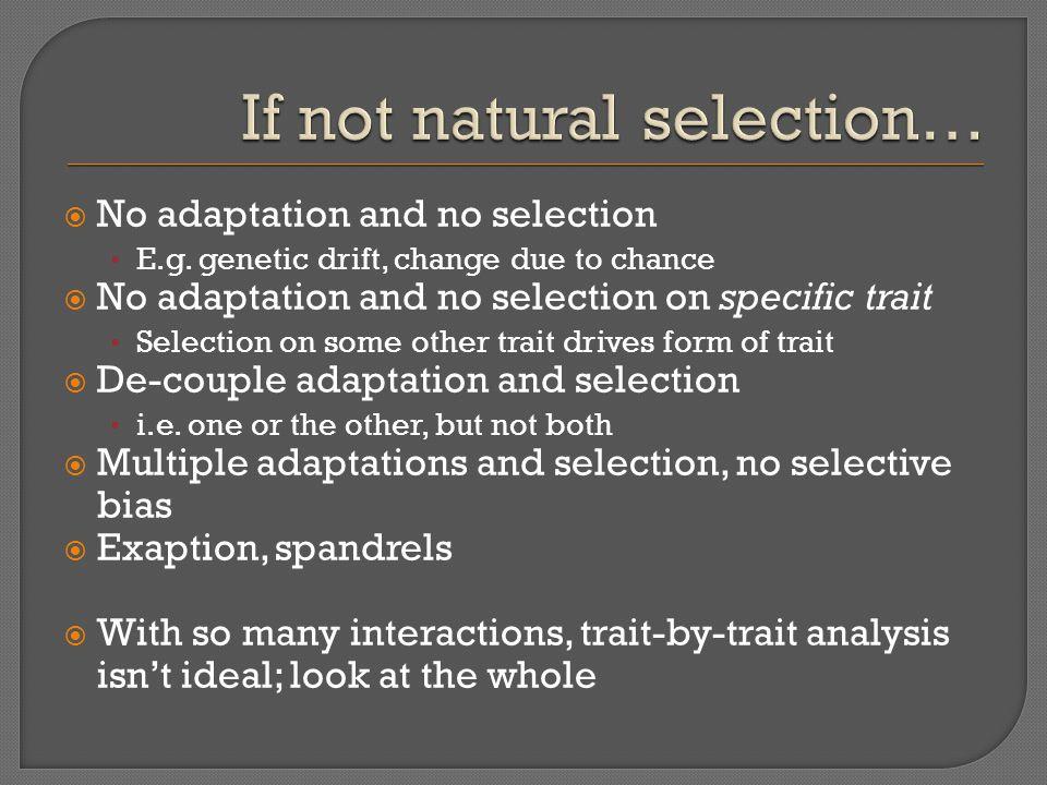 No adaptation and no selection E.g.