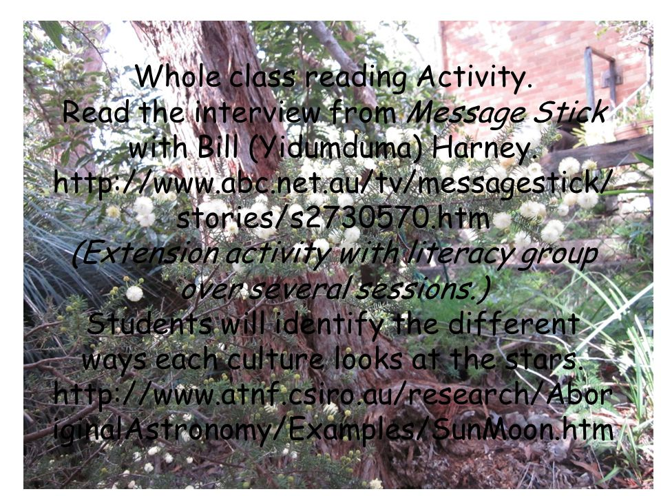 Whole class reading Activity. Read the interview from Message Stick with Bill (Yidumduma) Harney.