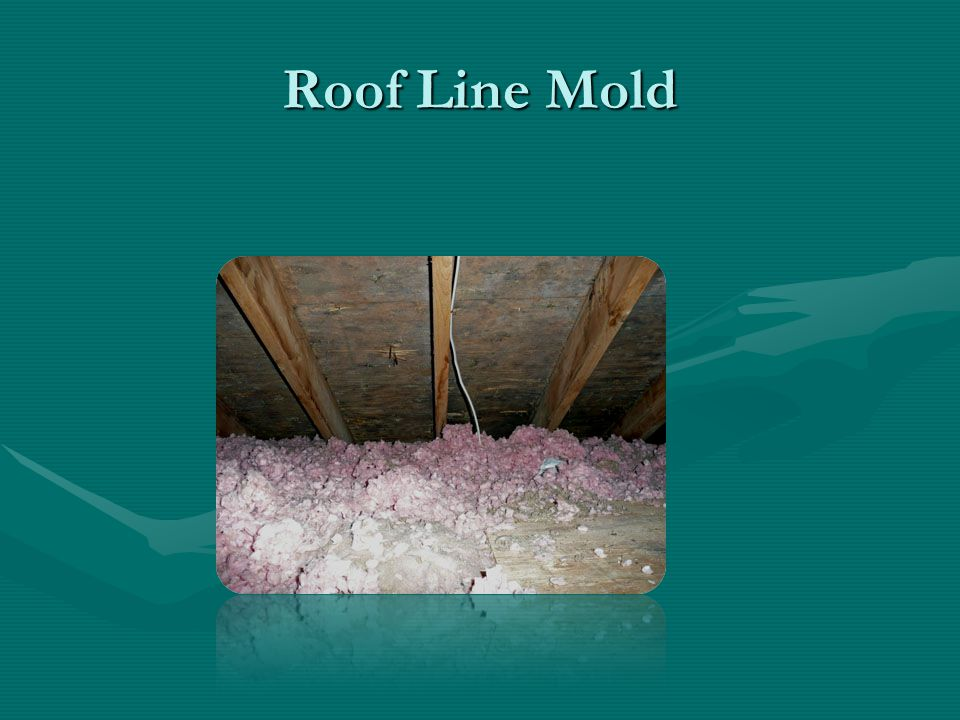 Roof Line Mold