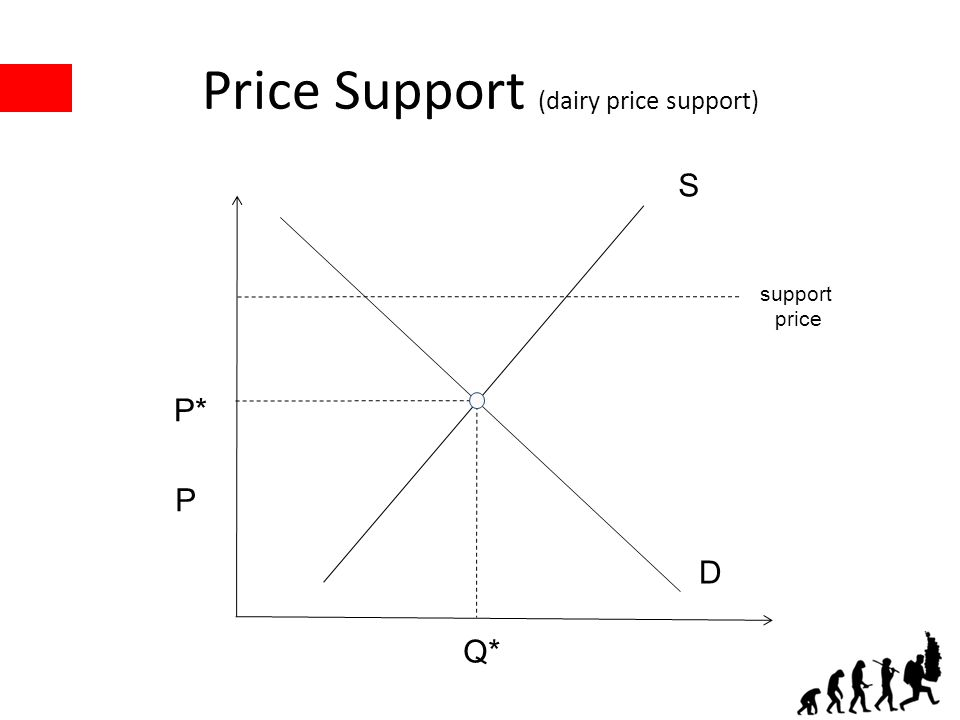 Price Support (dairy price support) P* Q* S D P support price
