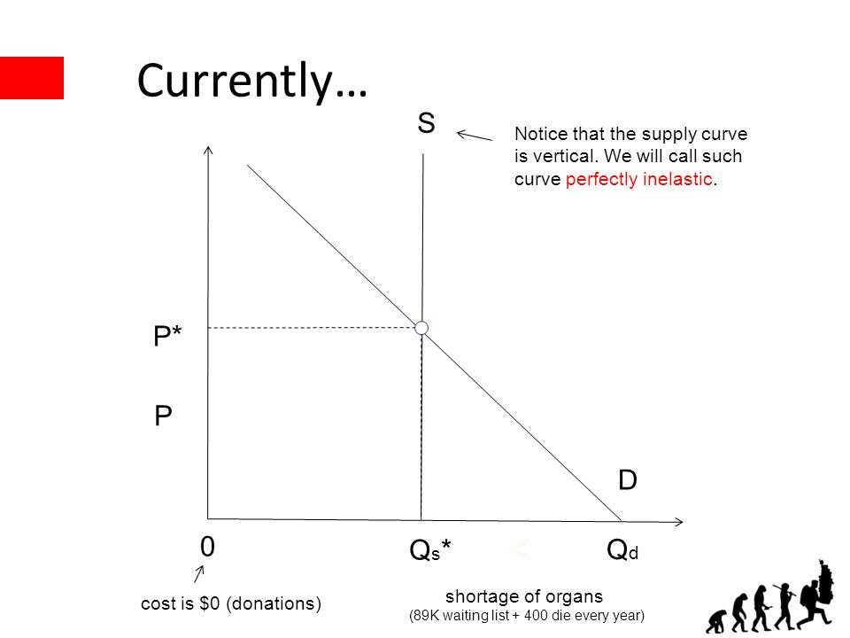 Currently… P* Qs*Qs* S D P Notice that the supply curve is vertical. We will call such curve perfectly inelastic. QdQd 0 cost is $0 (donations) shorta