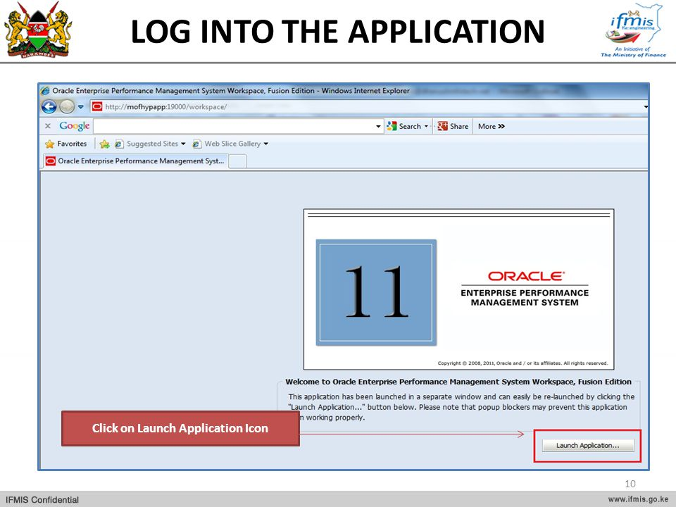 LOG INTO THE APPLICATION Click on Launch Application Icon 10