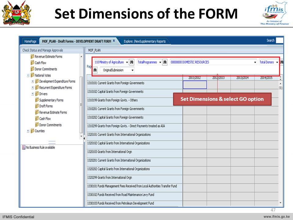 Set Dimensions of the FORM Set Dimensions & select GO option 47