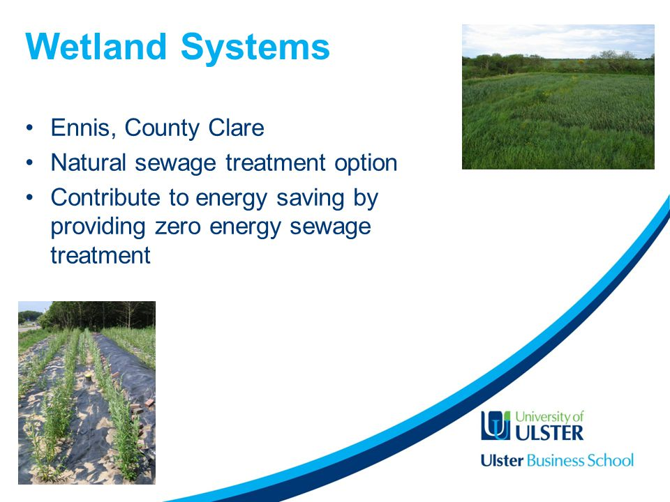 Wetland Systems Ennis, County Clare Natural sewage treatment option Contribute to energy saving by providing zero energy sewage treatment