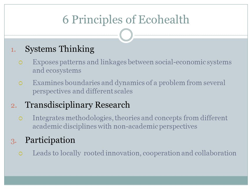 6 Principles of Ecohealth (con.) 4.