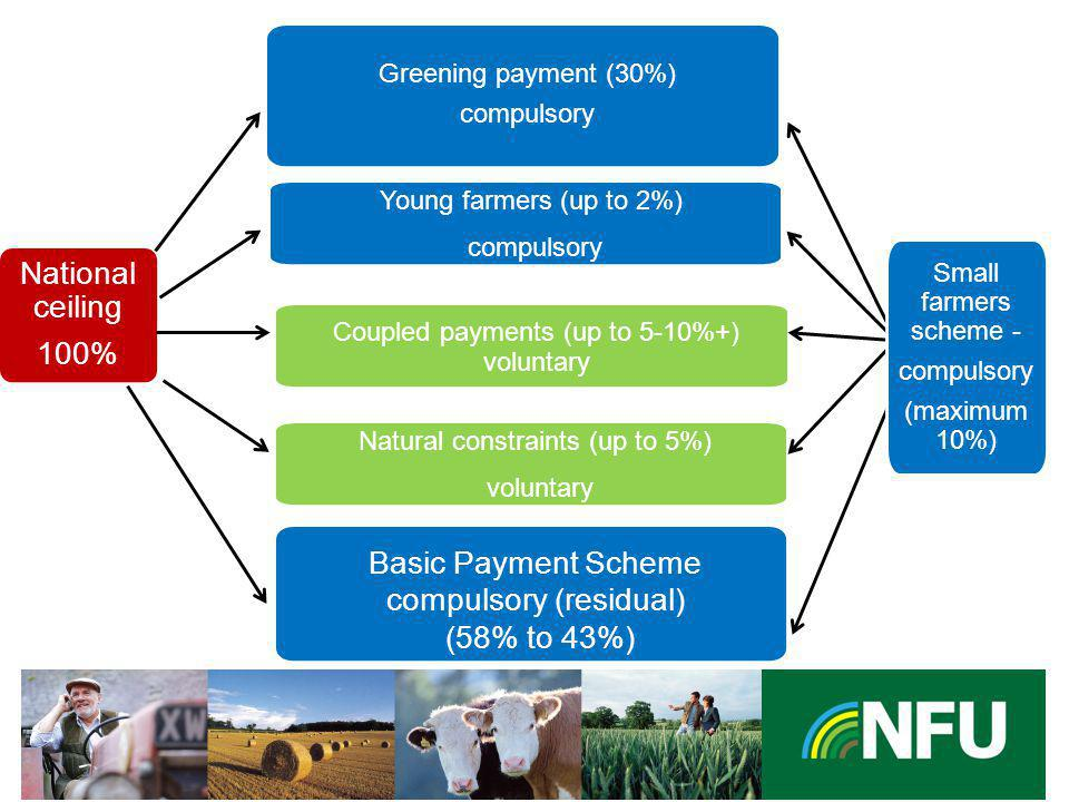 The NFU champions British farming and provides professional representation and services to its farmer and grower members An additional payment for green agricultural practices Farmers entitled to a payment under the basic payment shall observe all of the following agricultural practices: –Crop diversification –Maintenance of Permanent grassland –Ecological focus area