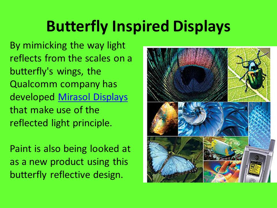 Butterfly Inspired Displays By mimicking the way light reflects from the scales on a butterfly s wings, the Qualcomm company has developed Mirasol Displays that make use of the reflected light principle.Mirasol Displays Paint is also being looked at as a new product using this butterfly reflective design.