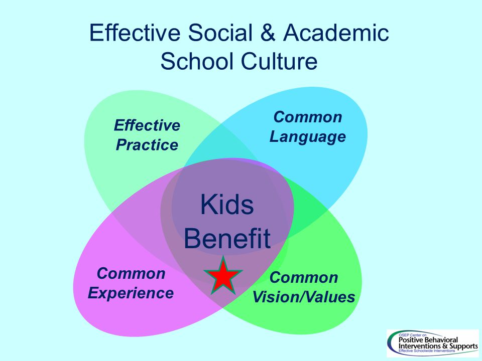 Effective Social & Academic School Culture Common Vision/Values Common Language Common Experience Kids Benefit Effective Practice