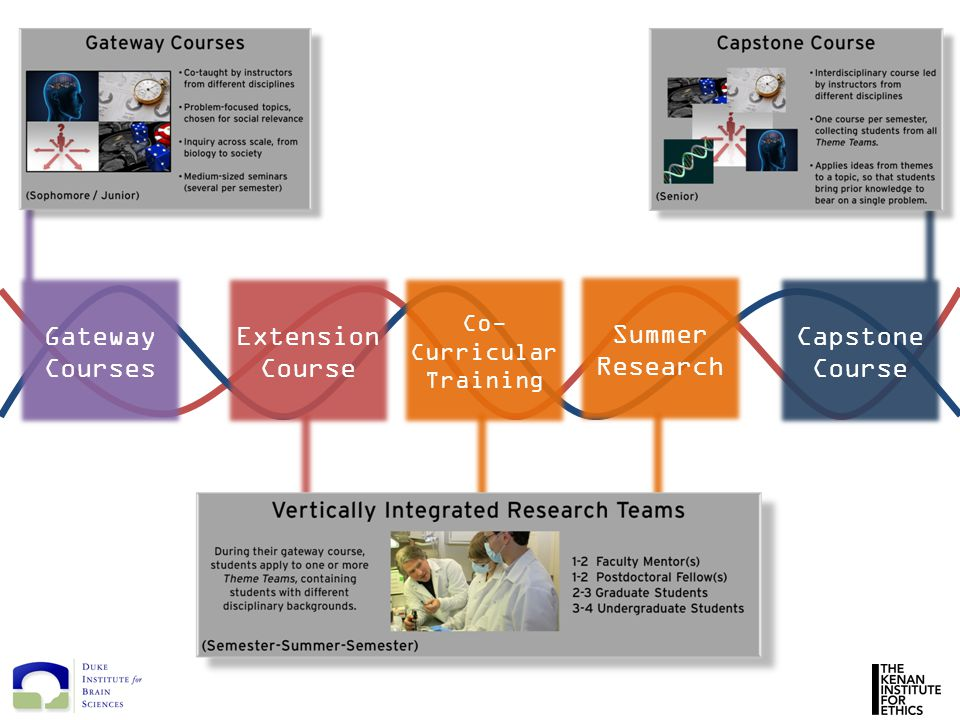 Gateway Courses Extension Course Co- Curricular Training Capstone Course Summer Research