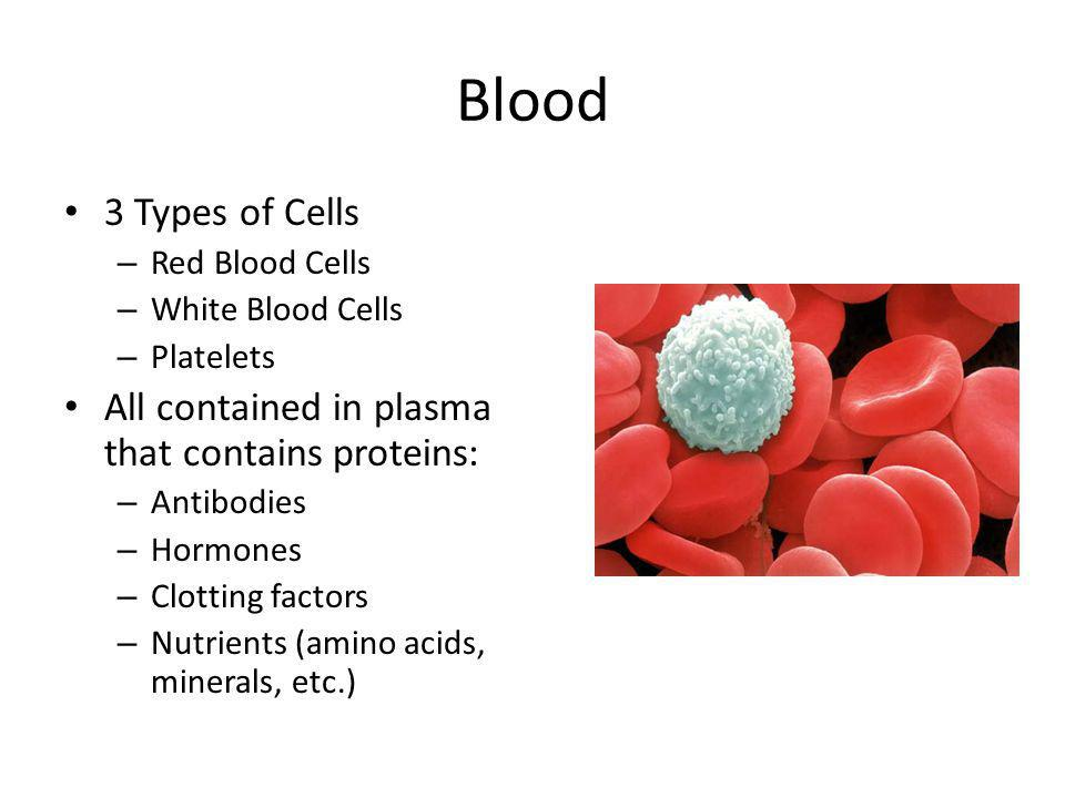 Blood Cells Red Blood Cells – Hemoglobin in the cell is iron-containing protein that transport oxygen to the tissues of the body White Blood Cells – Fights diseases and foreign invaders Platelets – Aid in blood clotting and are involved in repairing damaged blood vessels
