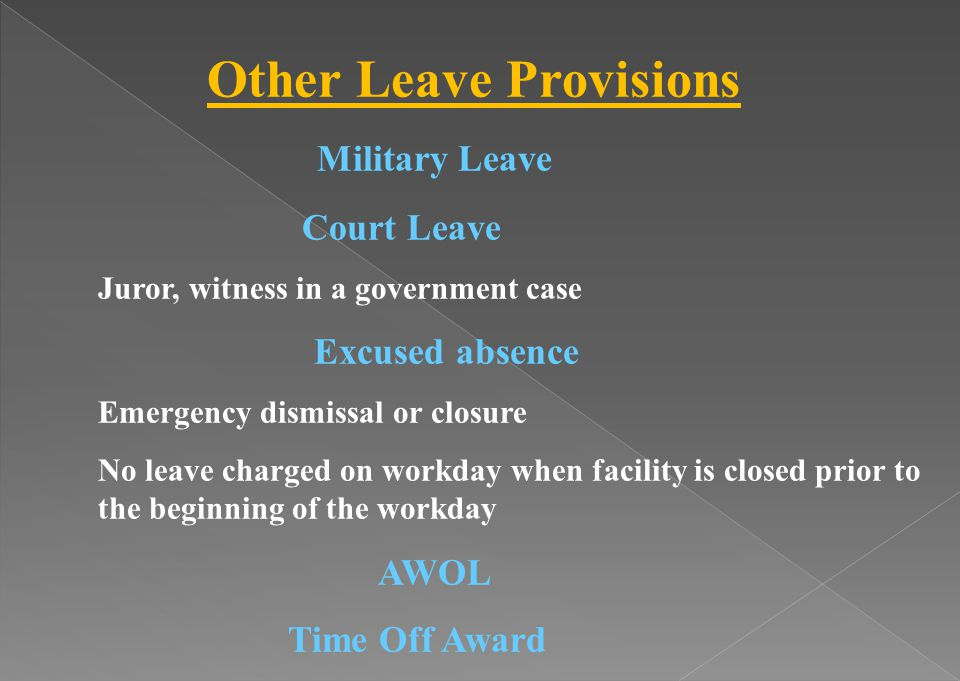 Other Leave Provisions Military Leave Court Leave Juror, witness in a government case Excused absence Emergency dismissal or closure No leave charged