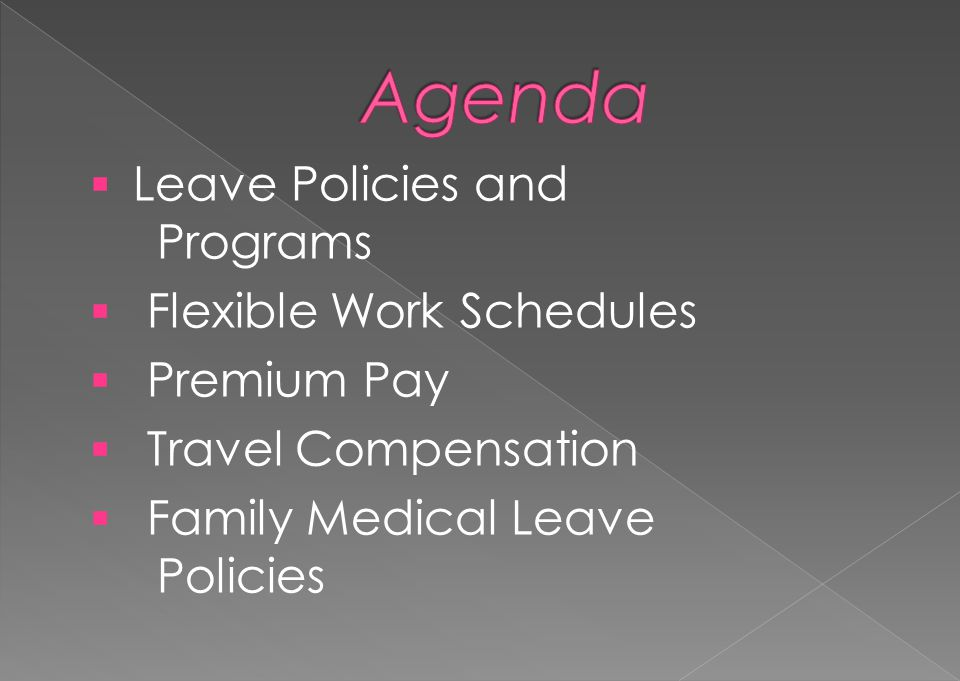 Family and Medical Leave Act Sick Leave for Family Care & Bereavement Sick Leave for Adoption Expanded Family and Medical Leave Organ Donation Leave Transfer Program