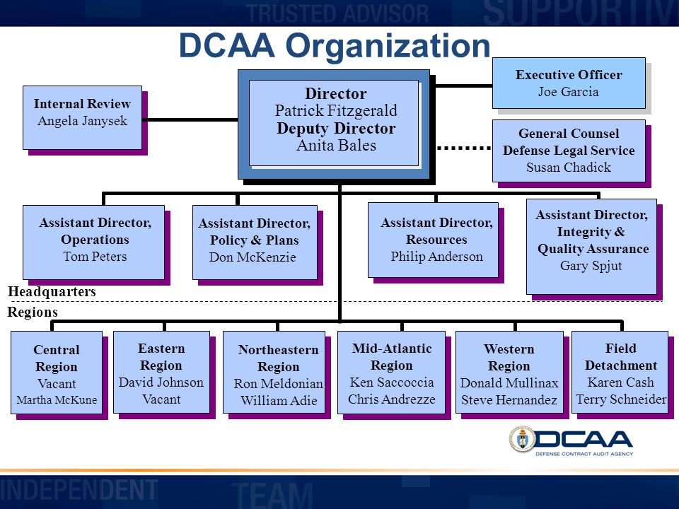 Financial Liaison Advisor DCAA s FLAs are auditing professionals assigned to buying commands and are DCAA s principal point of contact at the commands.