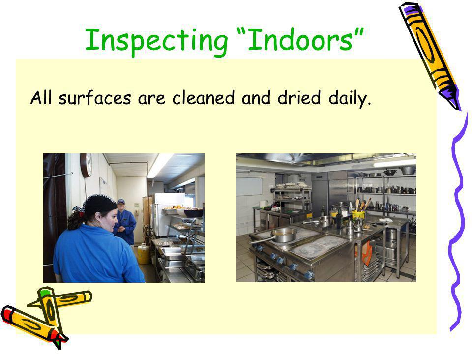 Inspecting Indoors Food should be kept in sealed containers or refrigerated: *Notice- wrap is loose, allowing insects easy access to food source.
