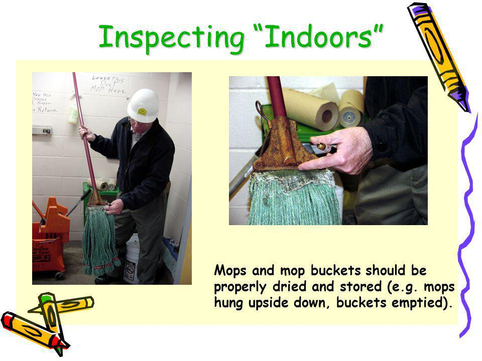 Inspecting Indoors Electrical cords and pipes are great runways for pests to access food, water and shelter.