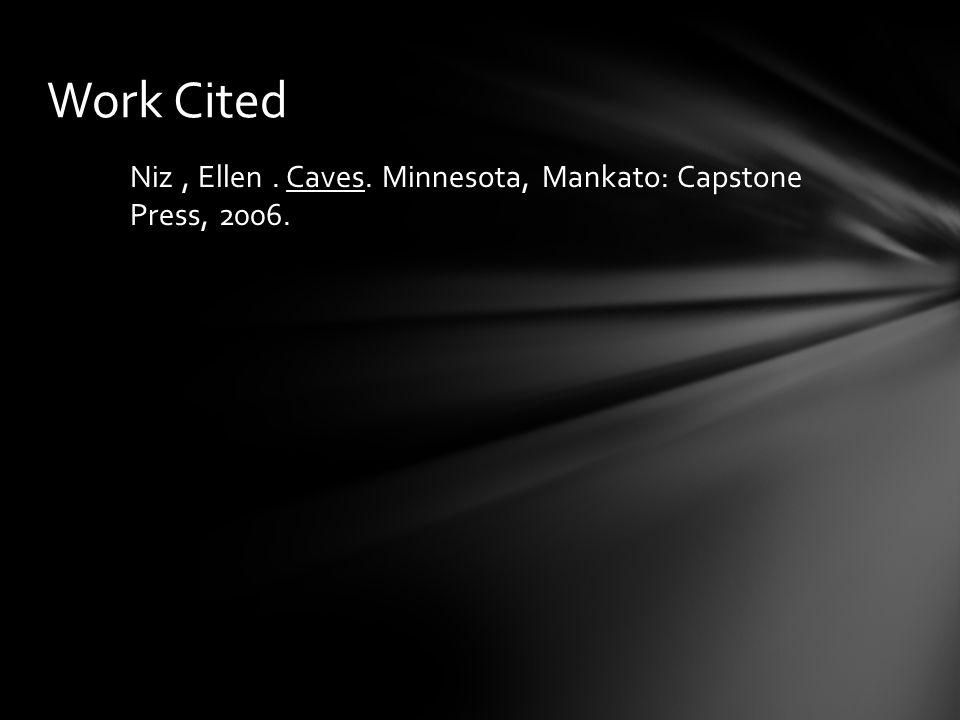 Niz, Ellen. Caves. Minnesota, Mankato: Capstone Press, 2006. Work Cited