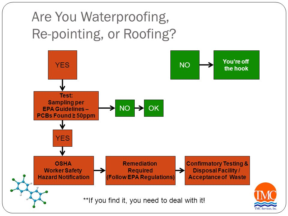 Are You Waterproofing, Re-pointing, or Roofing.