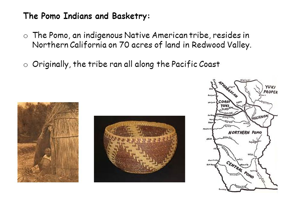 The Pomo Indians and Basketry: o The Pomo, an indigenous Native American tribe, resides in Northern California on 70 acres of land in Redwood Valley.