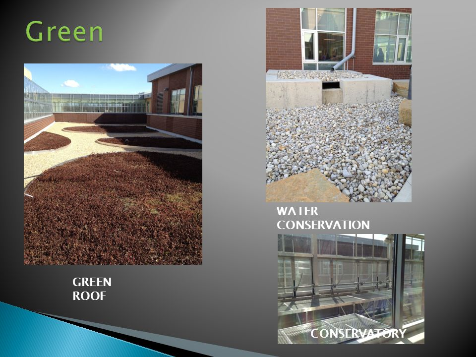 CONSERVATORY GREEN ROOF WATER CONSERVATION