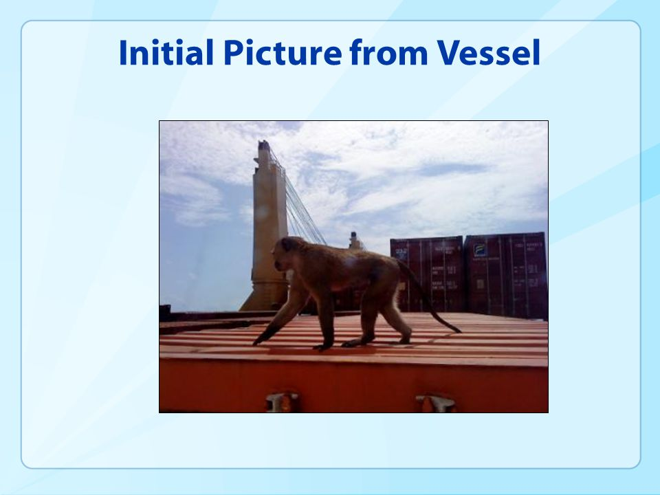 Initial Picture from Vessel