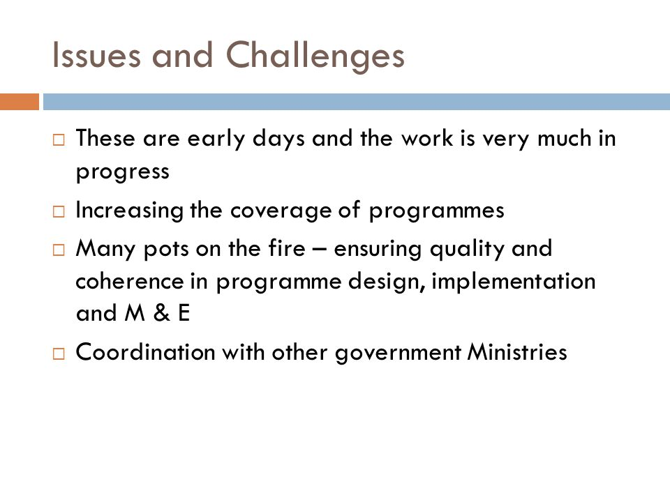 Issues and Challenges These are early days and the work is very much in progress Increasing the coverage of programmes Many pots on the fire – ensuring quality and coherence in programme design, implementation and M & E Coordination with other government Ministries