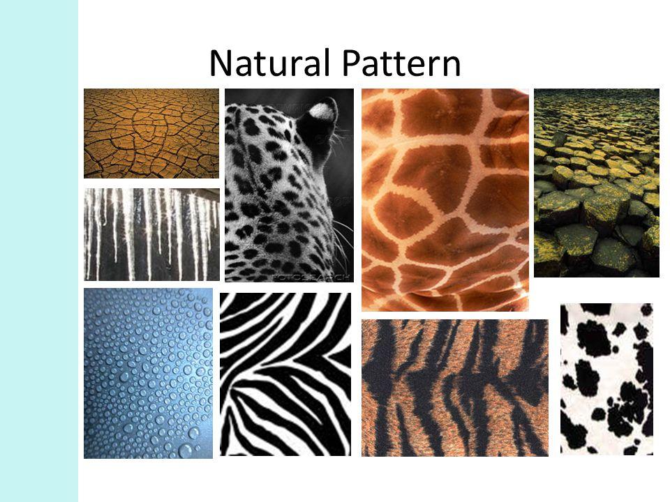 Natural Pattern
