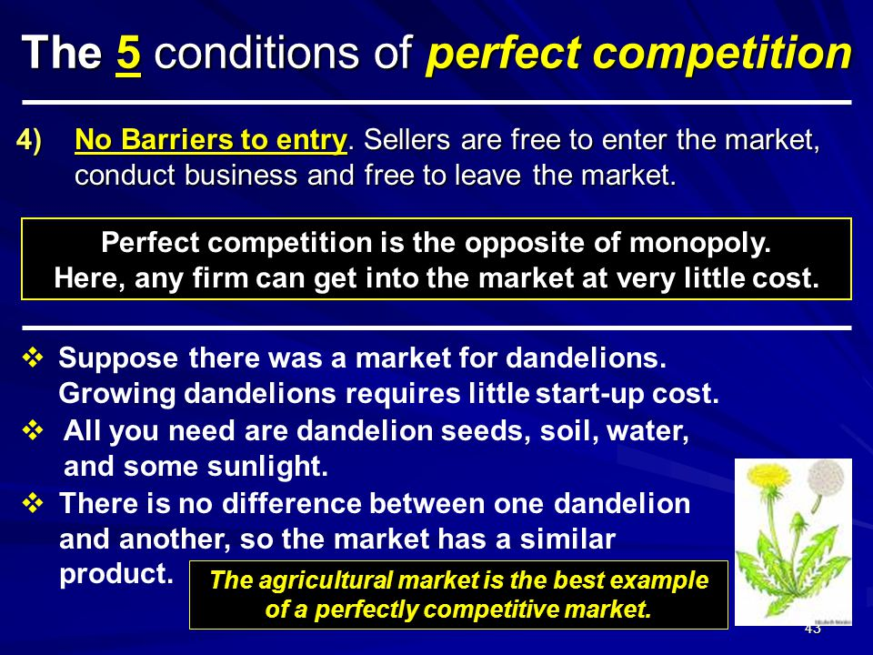 SWS © 2011 42 The 5 conditions of perfect competition 1)LARGE number of SMALL firms. No single buyer or seller can influence the price. 2)Buyers and s
