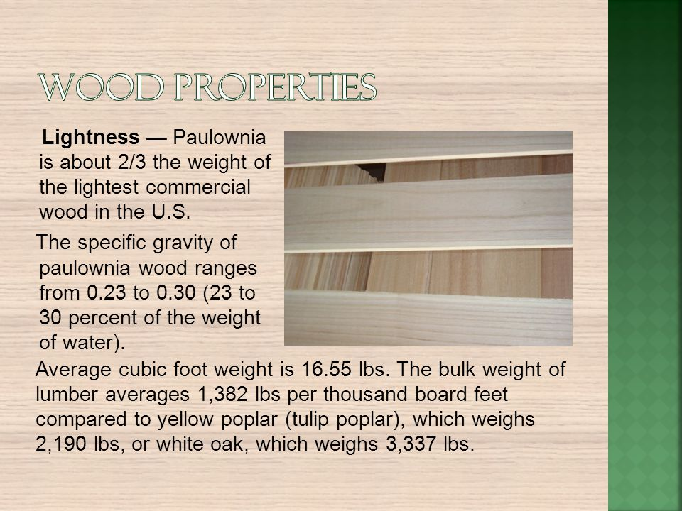 Lightness Paulownia is about 2/3 the weight of the lightest commercial wood in the U.S. The specific gravity of paulownia wood ranges from 0.23 to 0.3