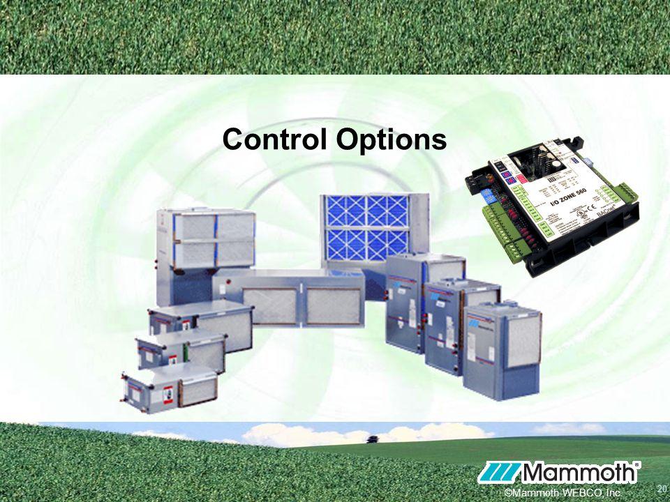 20 ©Mammoth-WEBCO, Inc. Control Options