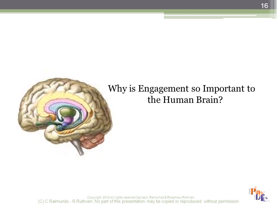 Copyright 2010 All rights reserved Carlos A. Raimundo & Rosemary Ruthven Why is Engagement so Important to the Human Brain? (C) C Raimundo - R Ruthven