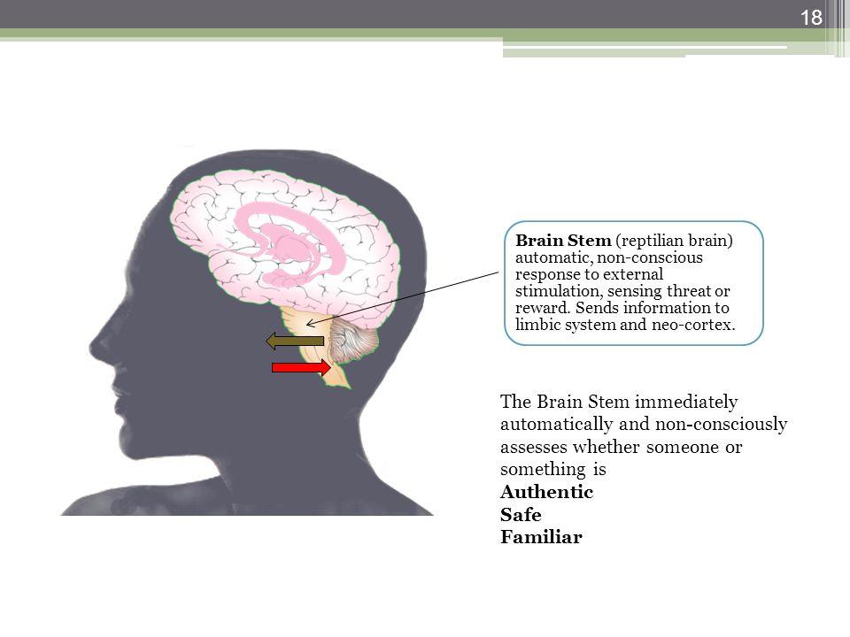 Brain Stem (reptilian brain) automatic, non-conscious response to external stimulation, sensing threat or reward. Sends information to limbic system a