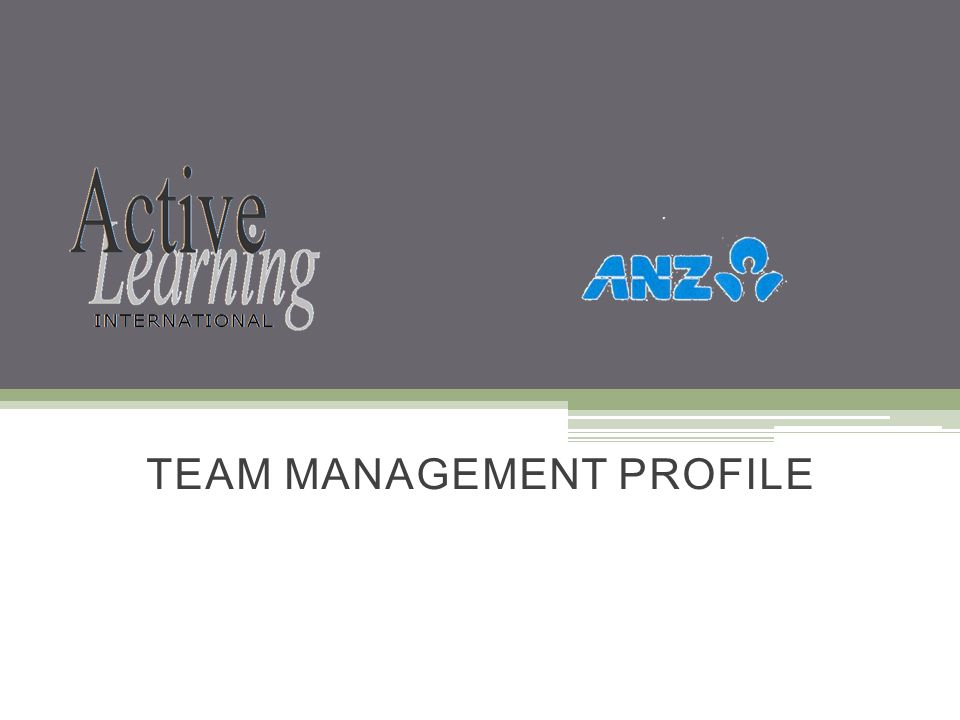 TEAM MANAGEMENT PROFILE