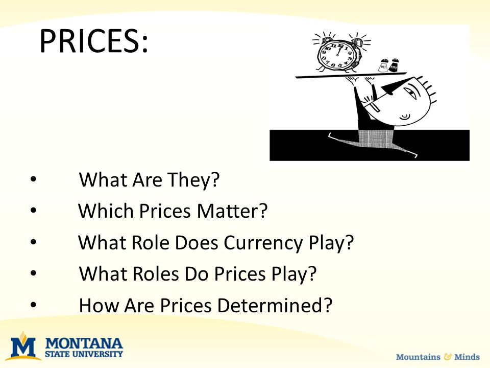 PRICES What Is a Price.A price is the amount paid by a buyer to purchase a good or service.