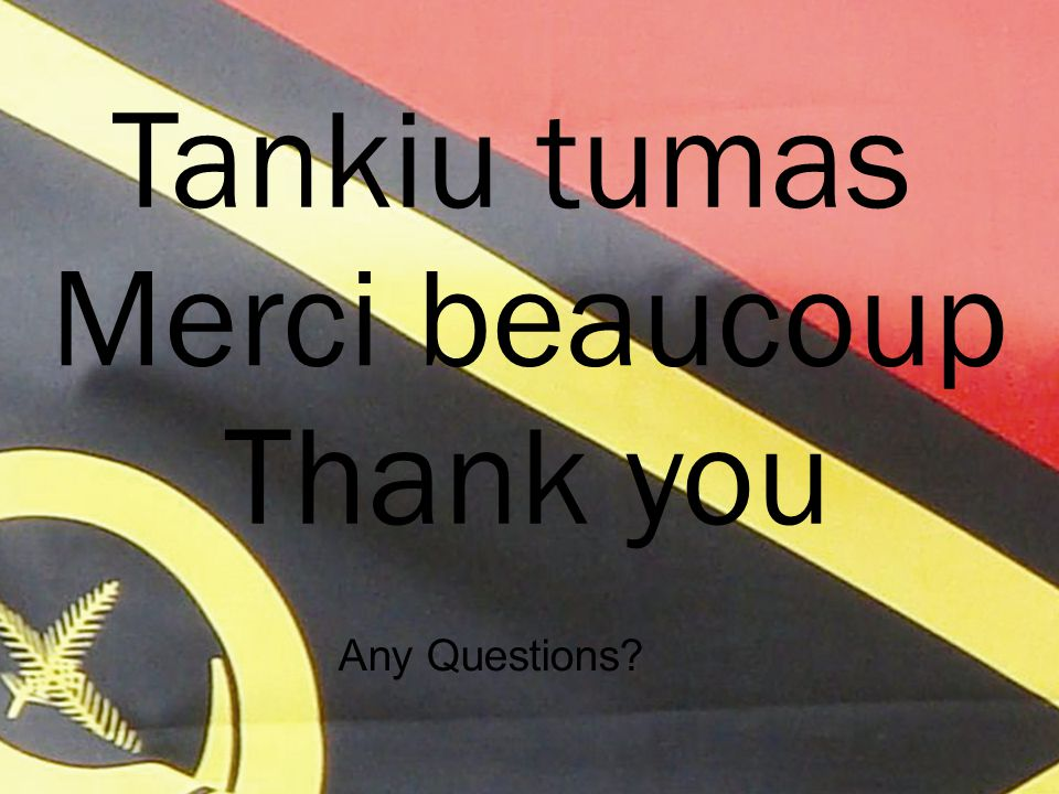 Tankiu tumas Any Questions? Merci beaucoup Thank you