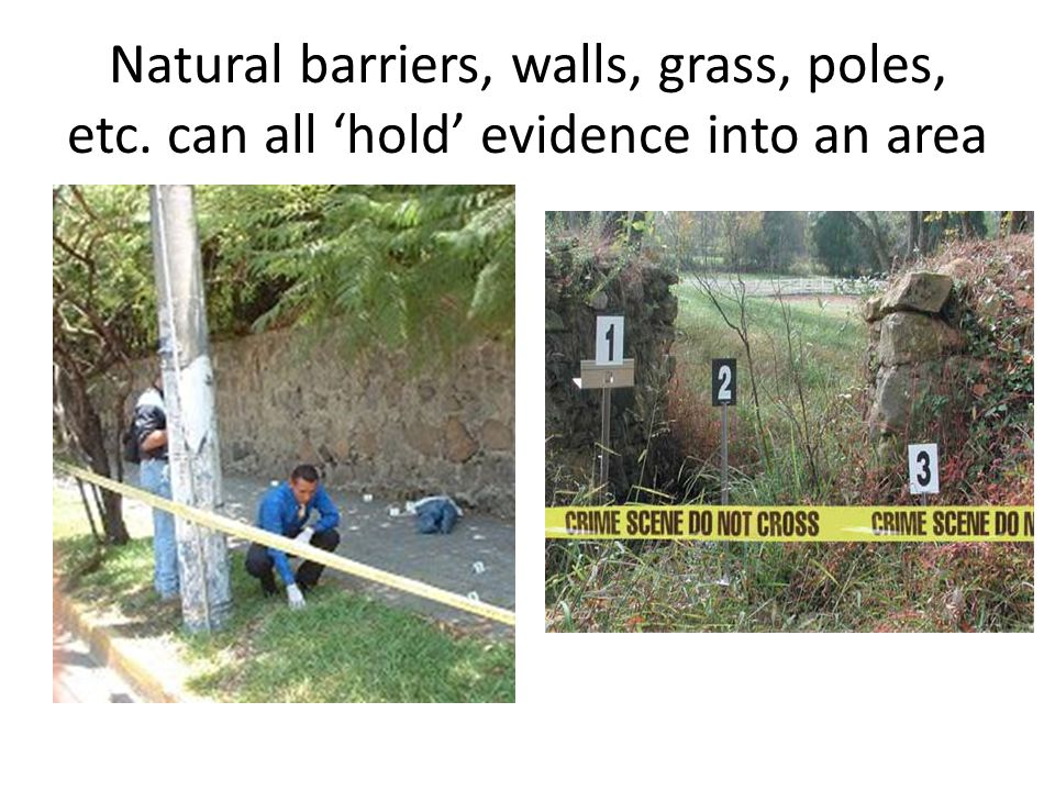 Natural barriers, walls, grass, poles, etc. can all hold evidence into an area