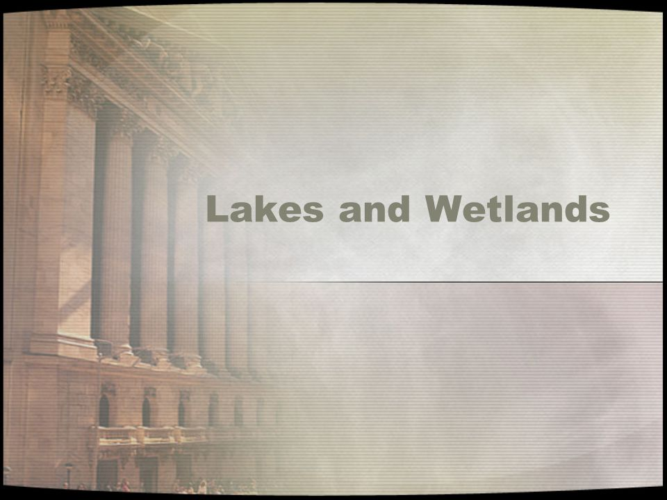 Lakes and Freshwater Wetlands A lake is a depression that collects and holds water.