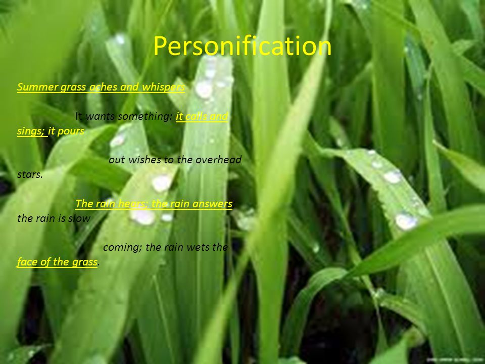 Personification Summer grass aches and whispers It wants something: it calls and sings; it pours out wishes to the overhead stars. The rain hears; the