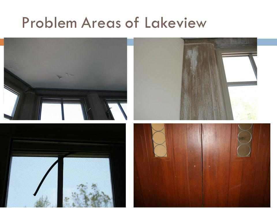 Problem Areas of Lakeview