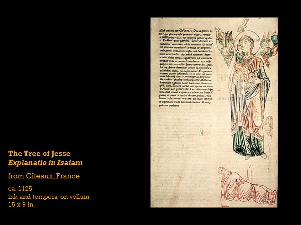The Tree of Jesse Explanatio in Isaiam from Cîteaux, France ca. 1125 ink and tempera on vellum 15 x 9 in.