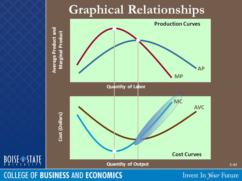 Average Product and Marginal Product Cost (Dollars) Graphical Relationships MP AP MC AVC Quantity of Output Quantity of Labor Production Curves Cost C