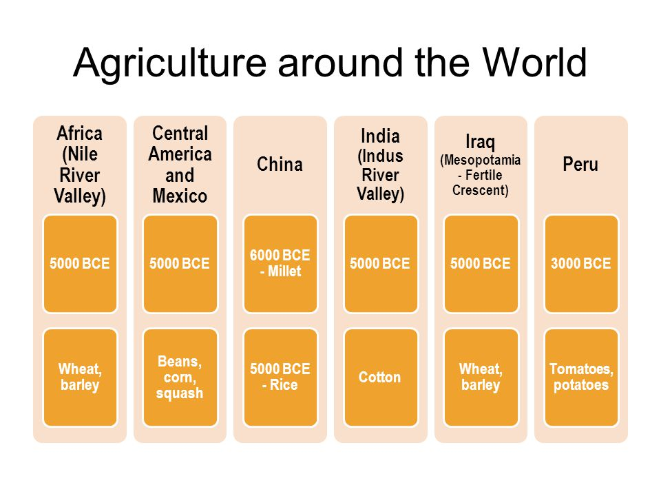Agriculture around the World Africa (Nile River Valley) 5000 BCE Wheat, barley Central America and Mexico 5000 BCE Beans, corn, squash China 6000 BCE - Millet 5000 BCE - Rice India (Indus River Valley) 5000 BCECotton Iraq (Mesopotamia - Fertile Crescent) 5000 BCE Wheat, barley Peru 3000 BCE Tomatoes, potatoes