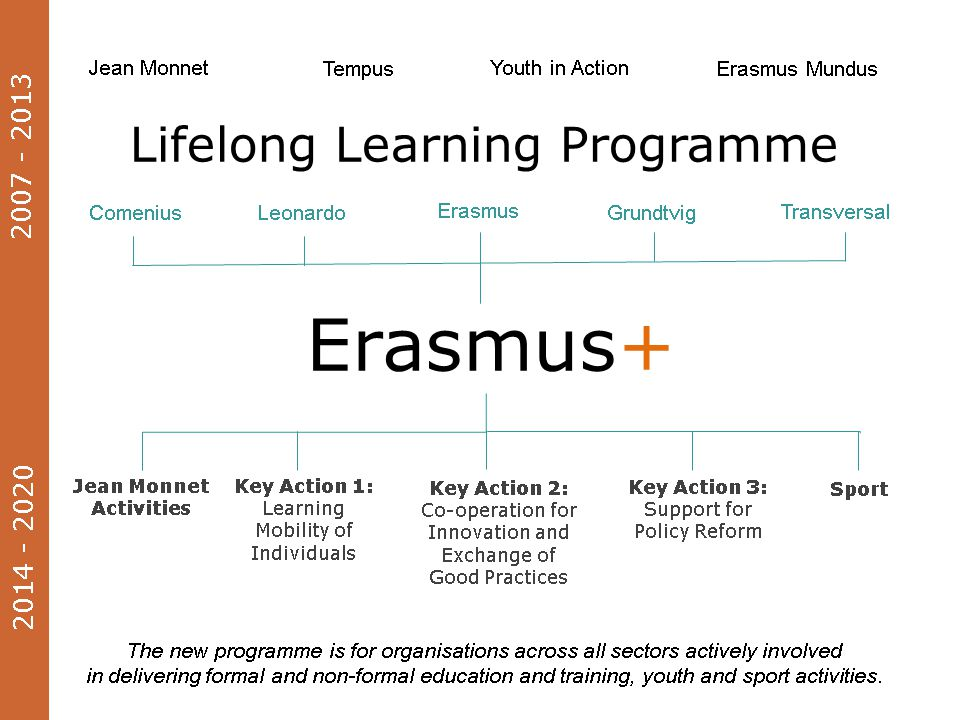 Project activities (and outputs) Divided into types For each type (eg intellectual outputs, events, mobility) : –Phase of the project: Preparation; Implementation; Follow-up; Dissemination; Closure –Title –Description –Tasks –Estimated start and end dates –Organisation leading the activity –Other participating organisations.