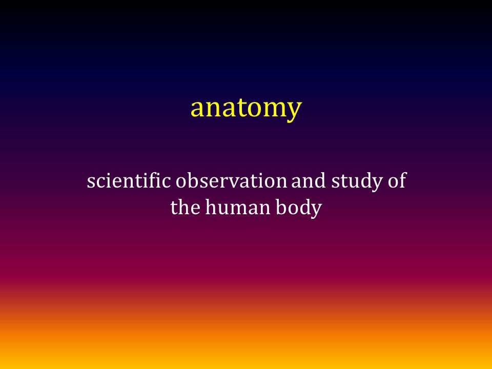 anatomy scientific observation and study of the human body