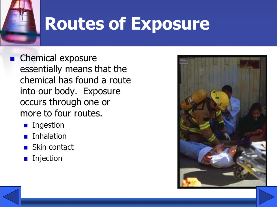 Routes of Exposure Chemical exposure essentially means that the chemical has found a route into our body. Exposure occurs through one or more to four