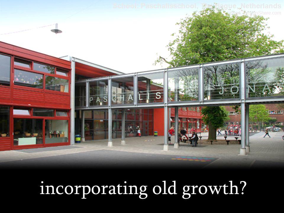 incorporating old growth? School: Paschalisschool, The Hague, Netherlands Image: DesignShare.com