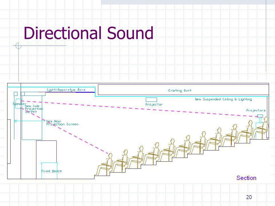 20 Directional Sound