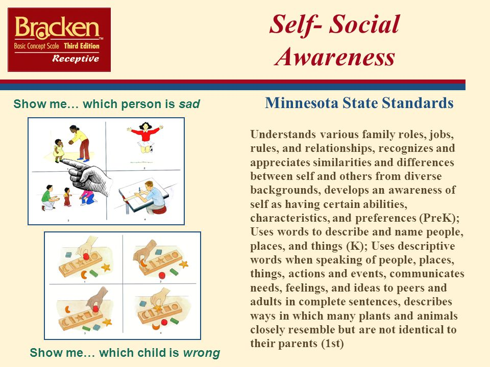 Self- Social Awareness Minnesota State Standards Understands various family roles, jobs, rules, and relationships, recognizes and appreciates similarities and differences between self and others from diverse backgrounds, develops an awareness of self as having certain abilities, characteristics, and preferences (PreK); Uses words to describe and name people, places, and things (K); Uses descriptive words when speaking of people, places, things, actions and events, communicates needs, feelings, and ideas to peers and adults in complete sentences, describes ways in which many plants and animals closely resemble but are not identical to their parents (1st) Show me… which child is wrong Show me… which person is sad