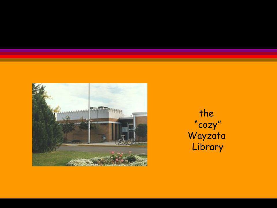 the cozy Wayzata Library