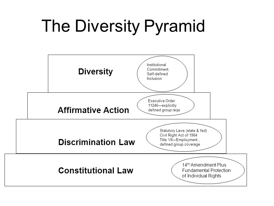 The Diversity Pyramid Constitutional Law 14 th Amendment Plus Fundamental Protection of Individual Rights Discrimination Law Statutory Laws (state & fed) Civil Right Act of 1964 Title VIIEmployment, defined group coverage Affirmative Action Executive Order 11246explicitly defined group reqs Diversity Institutional Commitment, Self-defined Inclusion