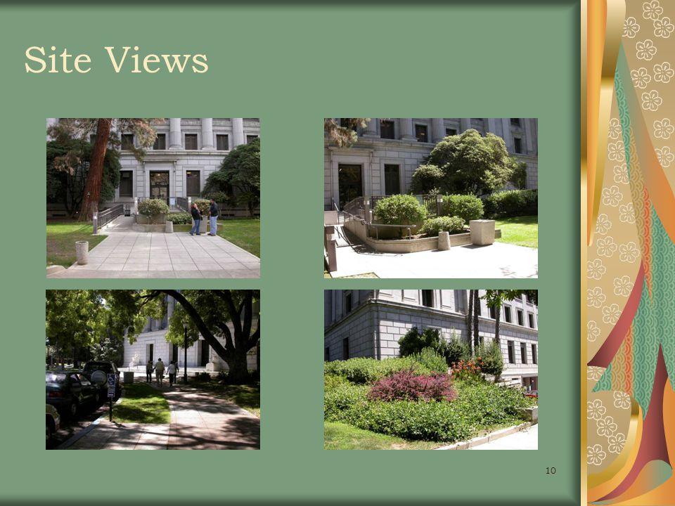 10 Site Views
